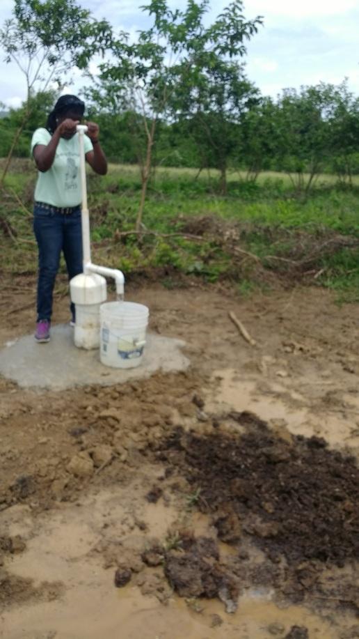 Pumping water.